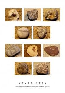 Venøs sten